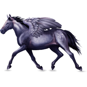 Winged riding unicorn Quarter Horse Strawberry roan