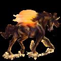 Unicorn pony Australian Pony Chestnut