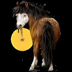 Пони Шетландский пони Пегий мышино-серый тобиано