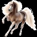 Riding Horse Standardbred Cherry bay