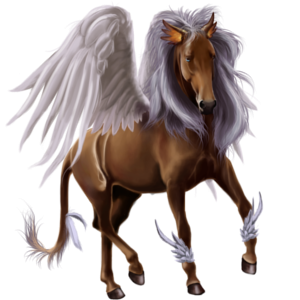Pegasus-Reitpferd Nokota Dunkelbrauner
