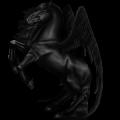 Pegasus Selle Français Liver chestnut
