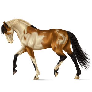 Riding pegasus Paint Horse Liver chestnut Tobiano
