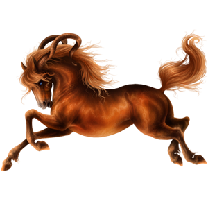 Licorne de selle Brumby Alezan Brûlé