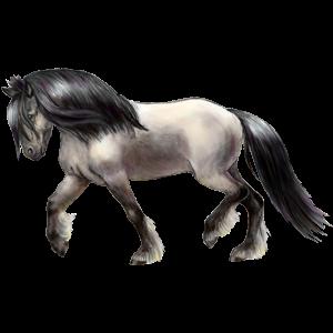 Pony Shetland Mouse gray Tobiano