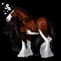 Riding unicorn Purebred Spanish Horse Black