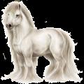 Cavallo da corsa Nokota Baio Scuro