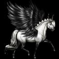 Winged unicorn pony  Fjord Brunblakk