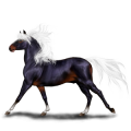Riding Horse Lusitano Light Gray