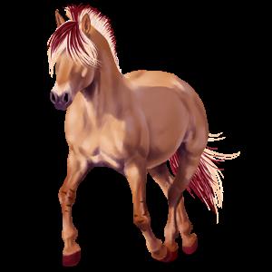 Pony Welsh Chestnut