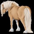 Pony Flaxen Chestnut