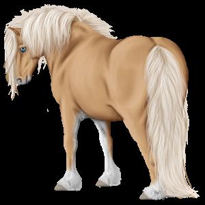 Pony Shetlander Lichtgrijs
