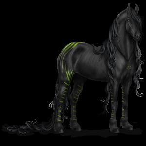 Riding Horse Akhal-Teke Strawberry roan
