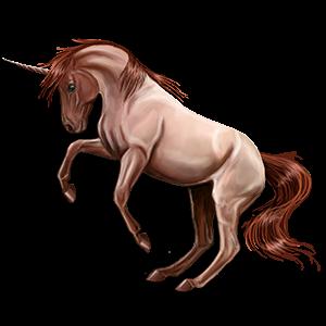 Einhorn-Reitpferd Araber Mausgrau