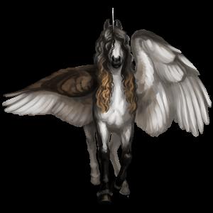 Winged unicorn pony  Highland Pony Dun