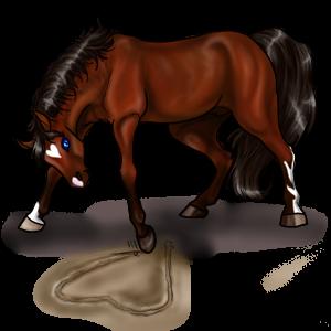 Poney Quarter Pony Alezan Crins Lavés