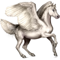 Pegasus pony Welsh Mouse Gray