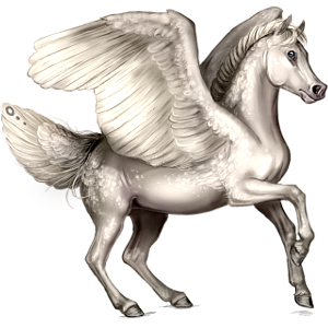 Pony-pegasus Shetlander Muisgrijze Tobiano