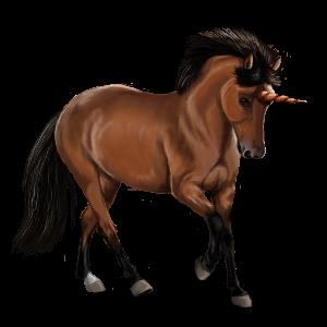 Unicorn pony Dartmoor Dark Bay