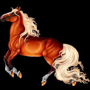 Riding Horse Hanoverian Flaxen Chestnut