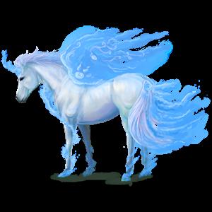 Winged unicorn pony  Kerry Bog Palomino Tobiano