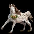 Licorne Quarter Pony Pie Tobiano Alezan Brûlé