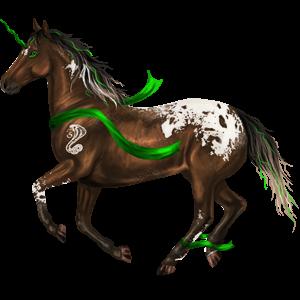 Riding unicorn Marwari Black Tobiano