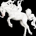 Pony Belgian Riding Pony Dapple Gray
