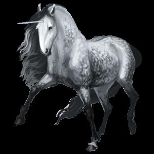 Riding unicorn Lipizzan Dapple Gray
