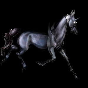 Winged riding unicorn Vanner Dapple gray Tobiano