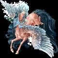 Pegasus KWPN Black