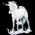 Unicorn pony Australian Pony Dapple Gray