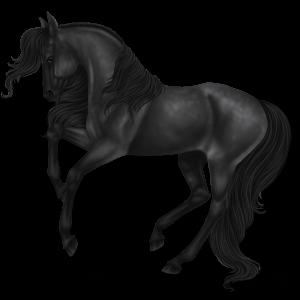 Верховая лошадь Цыганская упряжная Пегий огненно-гнедой тобиано