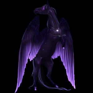 Pegasus Appaloosa Black Snowflake