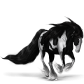 Pégase de selle Shagya Noir