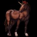 Jezdecký jednorožec Argentinský kreolský kůň Černý hnědák