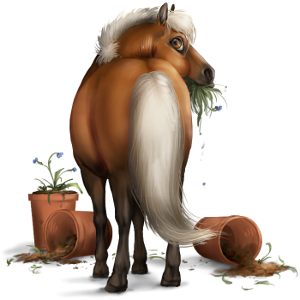 Pegasus-ponny Shetlandsponny Fux