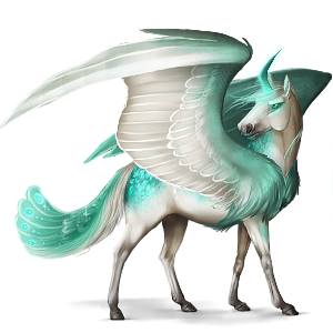 Winged unicorn pony  Australian Pony Roan