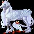 Pegaz Koń luzytański Jasnosiwa