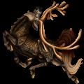 Riding unicorn Russian Don Horse Black