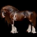 Cavalo de passeio Alazão crinalvo