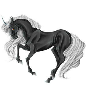 Riding unicorn Appaloosa Black
