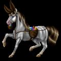 Riding Horse Lusitano Black