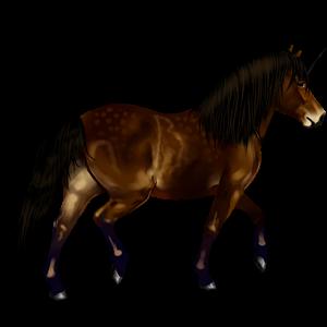 Unicorn pony Dartmoor Liver chestnut