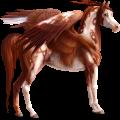 Licorne de selle ailée Arabe Alezan
