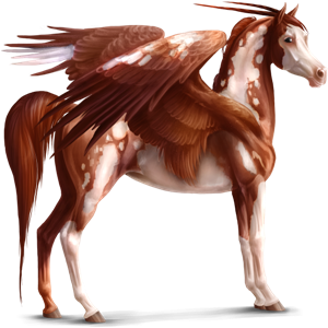 Winged riding unicorn Paint Horse Chestnut Tobiano