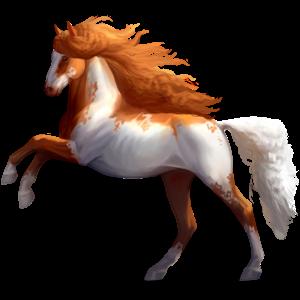 Riding Horse Thoroughbred Palomino