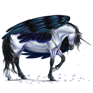 Winged unicorn pony  Australian Pony Dapple Gray