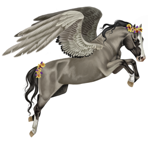 Riding pegasus Brumby Fleabitten Gray