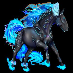 Riding pegasus KWPN Dark Bay